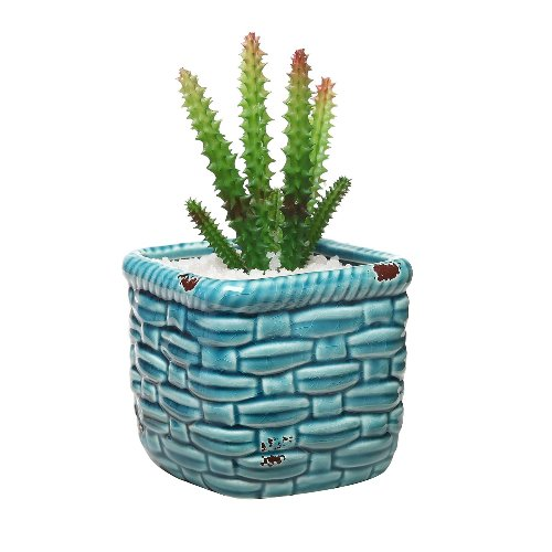 Turquoise Pottery Succulent Planter