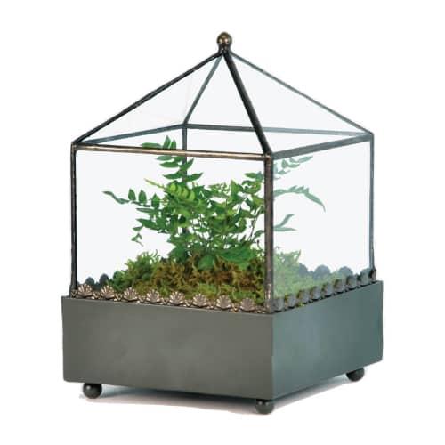 H Potter Square Glass Plant Terrarium