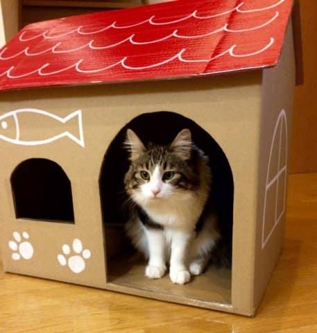 Neko Atsume DIY cat house made with sturdy corrugated cat house