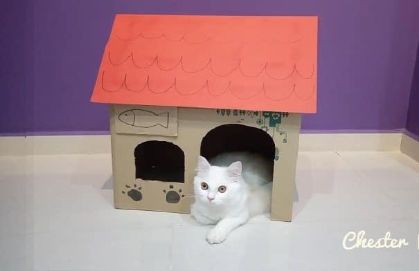 Simple DIY cat house idea inspired by Neko Atsume