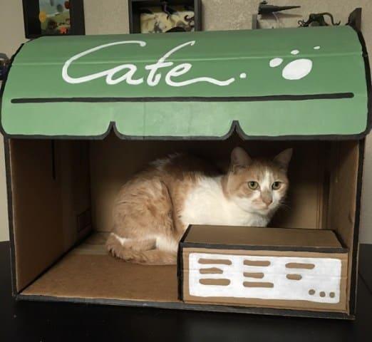 Neko Atsume craft - cafe