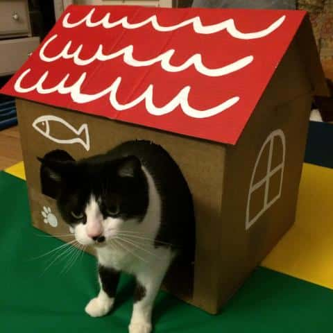 Cat house made with recyclable material
