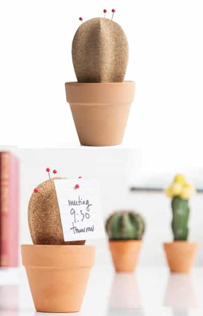 Cactus Desktop Declutterer - gift ideas for teacher