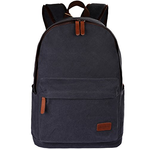ibagbar classic canvas backpack