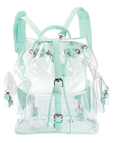 Zicac Transparent Bag