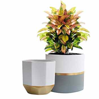 gifts-for-gemini-ceramic-planter